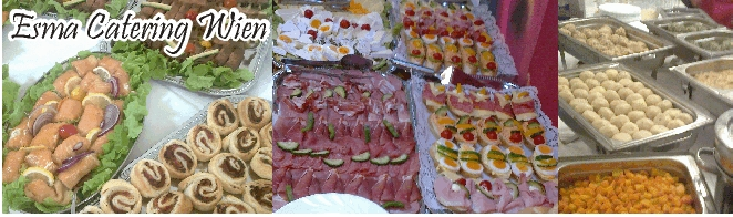 Fingerfood Catering Wien